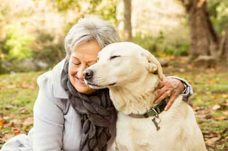 Owning a dog may make elderly more active